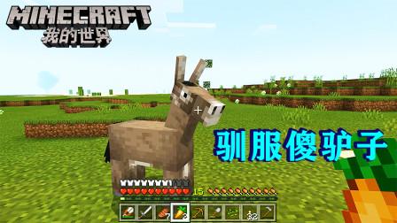 我的世界13:傻驴子不用喂食就能驯服,以后去赶集,就靠它了!