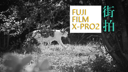 【adobeloft】X-PRO2 今天的街拍记录