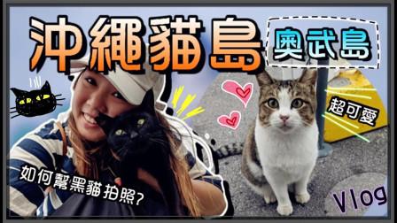 【鱼乾】冲绳猫岛[ 奥武岛 ] - 又黏又亲!差点带回家!(Ft Pixel 4)