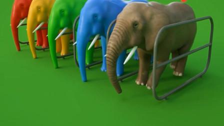亲子早教认知各种彩色小象 都有 什么样的颜色呢