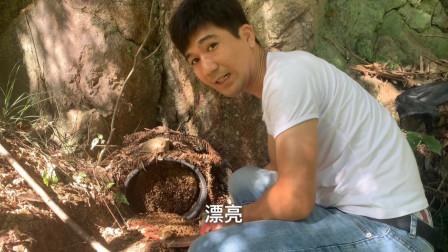 今天小伙去收野蜂了,打开爆桶,4斤野蜜到手好容易,不用担心诱蜂诱不到