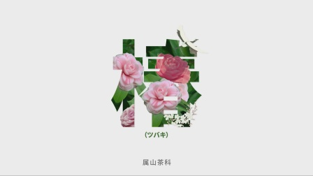 曼妮芬椿系列暖衣 - Video by #质点DOT#