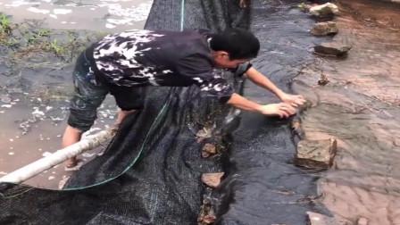 水库开闸放水,农村小伙提前来布置陷阱,坐等收货小鱼小虾了!
