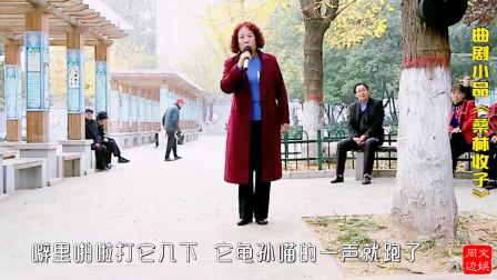 大妈翻唱幽默段子——中原名丑张晓英主演之曲剧小品《桑林收子》唱段