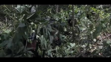火蓝刀锋:本以为能靠隐蔽躲过搜查,没想到外军手里有着高科技!