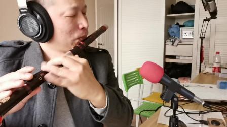 竹笛笛子演奏曲之:西海情歌