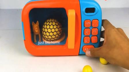 亲子早教 认识微波炉里变出来的动物昆虫 动物玩具