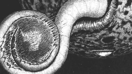 《伊藤润二:地狱星第六话》 当地球仅剩6个人的时候,结局很意外