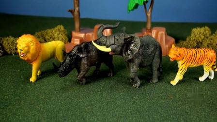 亲子早教认知各种玩具野生动物 组装狮子犀牛与老虎