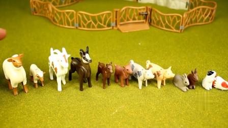动物世界 亲子早教认知各种动物与建筑动物园