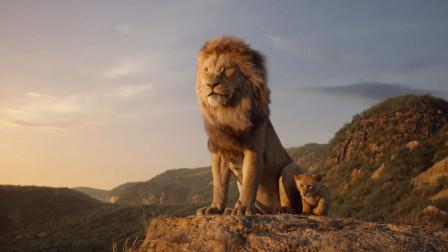 狮子王的隐藏剧情,一个丑八怪的感情故事