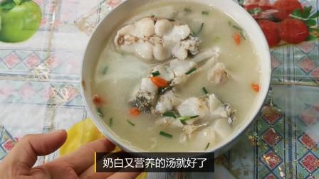 简单又营养,家里孩子老人都爱吃的鲈鱼汤