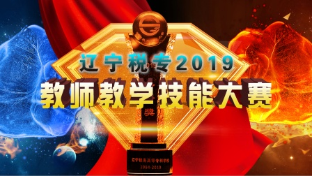 2019辽宁税专教师教学技能大赛