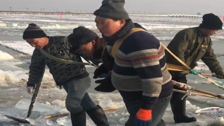 冰雕展马上就要开始了,村民们一起来冰河上人工取冰,太辛苦了!