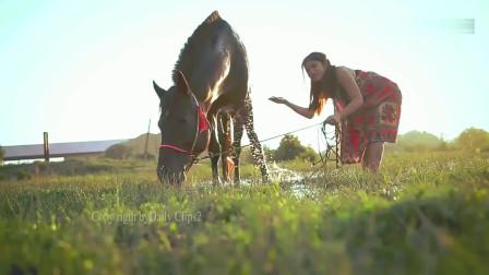 小姐姐牵马去给它洗澡,如沐春光的样子,画面太有爱了