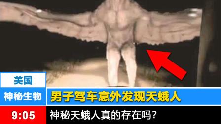 【神秘生物】天蛾人在美国被人发现!