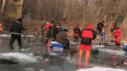 农村人胆子真不小,池塘上的冰快化了还敢来钓鱼,作死啊!
