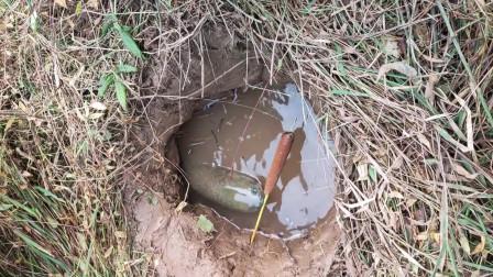 农村小伙油炸了一根火腿肠,直接放在洞口诱惑大鱼,结果还起作用了!