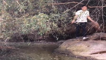 农村小伙来姑姑家做客,打算把后山的水潭放干抓鱼,太会玩了!