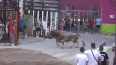 极限挑战:西班牙街头斗牛,每一秒都如此刺激,玩的就是心跳!