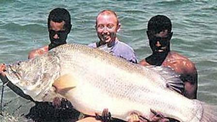 淡水巨怪尼罗河鲈鱼 无所不吃灭绝一方