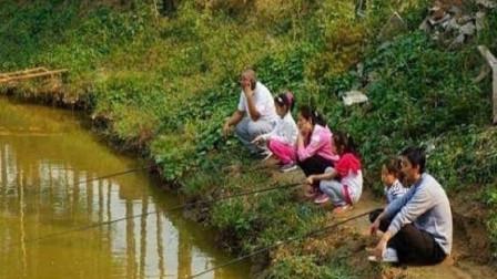 在野地里为什么挖个鱼塘,过一段时间就会有鱼?答案你绝对想不到