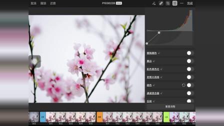 能修raw照片的平板软件, 功能非常之强大