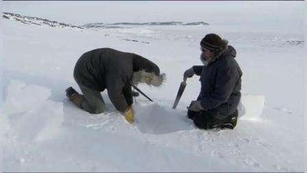 零下38度的北极寸草不生,因纽特人教你搭雪屋,这可是项技术活!