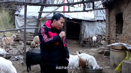 农村小伙演唱一首《后来》,送给那些没能留住幸福的情侣