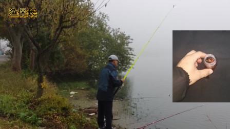 钓鱼老哥就用这招在水库里叱诧风云,现在和盘托出分享给钓友