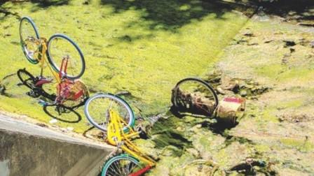 单车无缘无故被人丢弃 失踪的数字超夸张