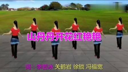 广场舞《山丹丹开花红艳艳》优美旋律,美女舞姿动人