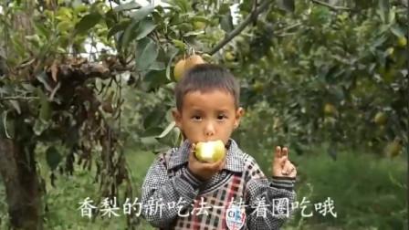 新疆库尔勒香梨 新鲜水果酥梨