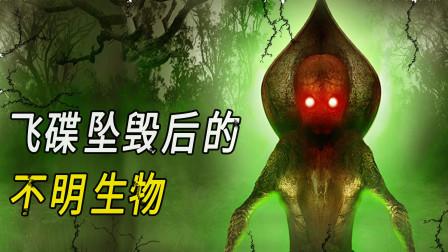 【未知生物系列02】不明飞行物坠落后出现的弗拉特伍兹怪物,多人现场目击