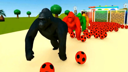小猫咪 小猪 马儿穿过足球隧道变成大猩猩大象狗熊 动物动漫