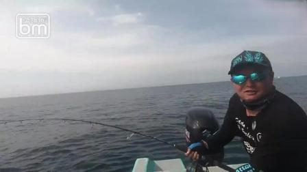 深海偶遇旗鱼群,力气似蛮牛,出水一看比人还高