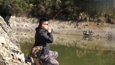 又细又软的小鱼竿,遇到十多斤的大鱼,线杯被拉得嗡嗡响