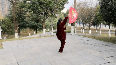 陈氏48式太极扇,2020年1月12日鲍俊练习