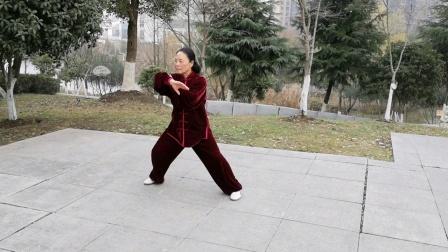 陈氏24式养生太极拳,2020年1月12日鲍俊练习:
