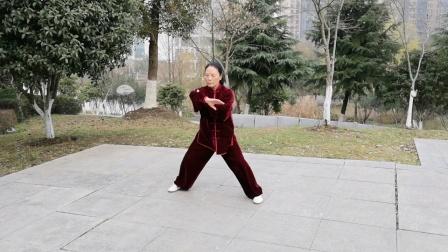 陈氏56式太极拳,2020年1月12日鲍俊练习