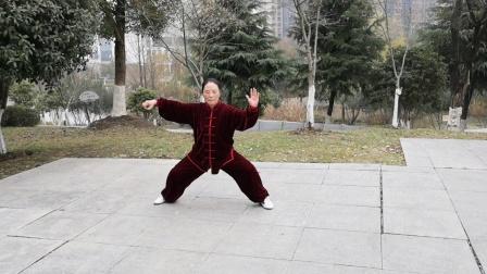 陈氏老架一路,2020年1月12日鲍俊练习
