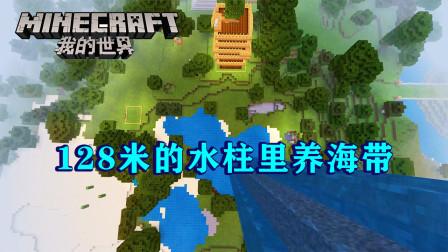 我的世界77:海带可以长多高?种到128米高的水柱里,能长到顶上吗?