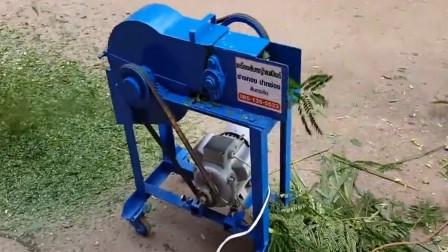 如何才能轻松切割草料呢?大叔自制草料切割机,3秒钟切割一份草料