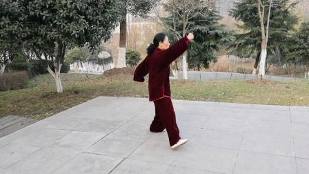 陈氏56式太极拳,2020年1月14日于芜湖西洋湖公园,鲍俊自纠視频。