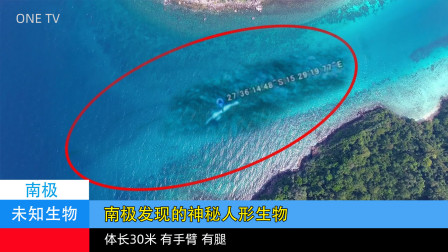 【未知系列03】南极神秘发现,体长30米的人形海洋生物Ningen
