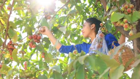 泰国美女模仿李子柒,采摘玫瑰苹果做果汁,网友:这是什么神仙颜值
