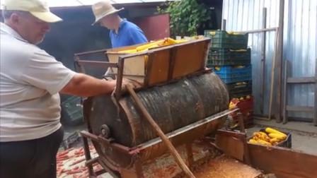 国外大叔自制玉米脱粒机,自动脱粒一干二净,一起来见识下!