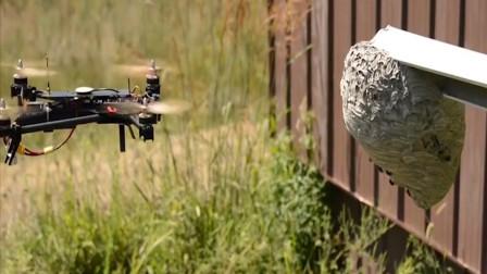 用无人机拍摄马蜂会被蜇吗?老外奇葩实验,靠近的瞬间意外发生了