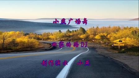 小燕广场舞(回家的路DJ版)