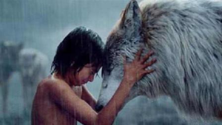狼孩是怎么形成的?为什么狼遇到婴儿不吃掉?看完就知道了!